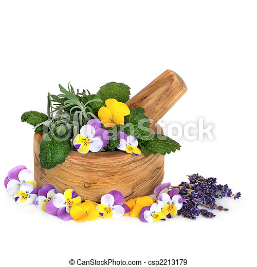 Medicinal Herbs and Flowers - csp2213179