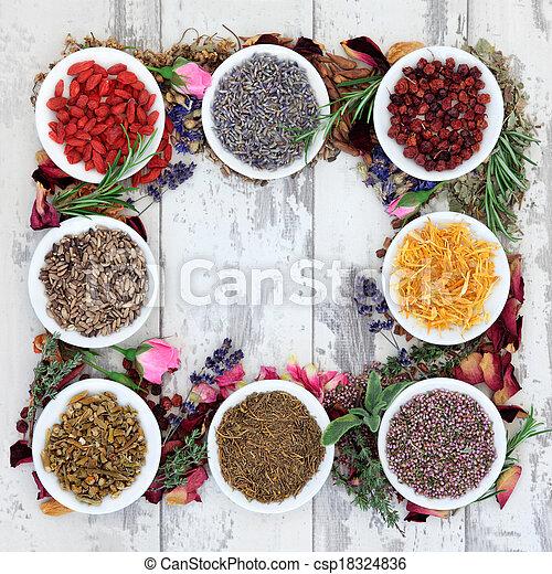 Medicinal Herbs - csp18324836