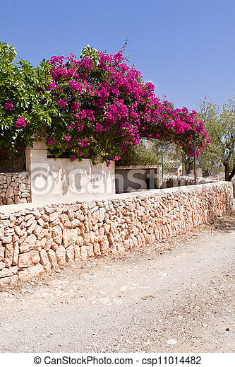 Mediterranean brick entrance garden with pink flowers in summer mediterranean brick entrance garden with pink flowers csp11014482 mightylinksfo