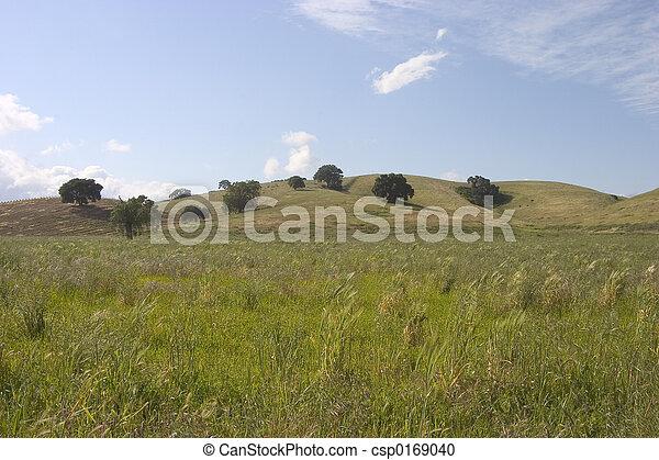 Medow Land - csp0169040
