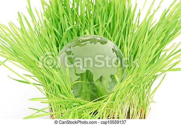 meio ambiente, conceito - csp10559137