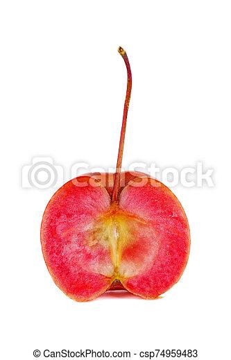 mela, granchio, mezzo - csp74959483