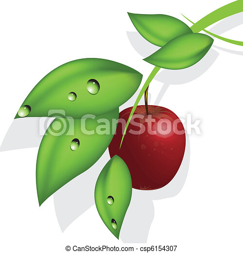 mela rossa - csp6154307