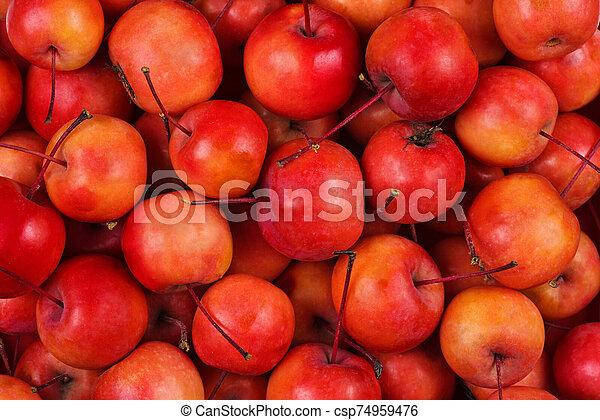 mele, granchio - csp74959476
