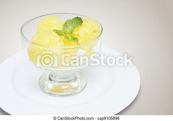 Sorbete de melón y melón - csp9105896