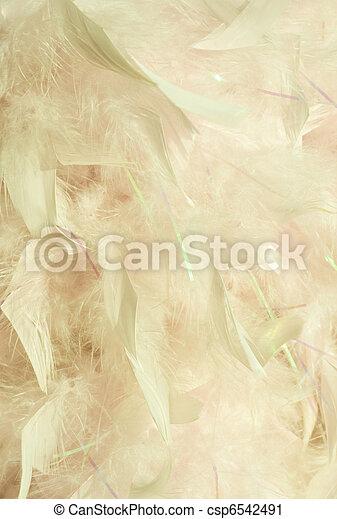 melocotones, velloso, pluma, crema - csp6542491