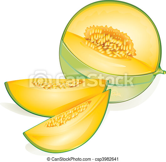 melon rh canstockphoto com lemon clipart png lemon clip art images