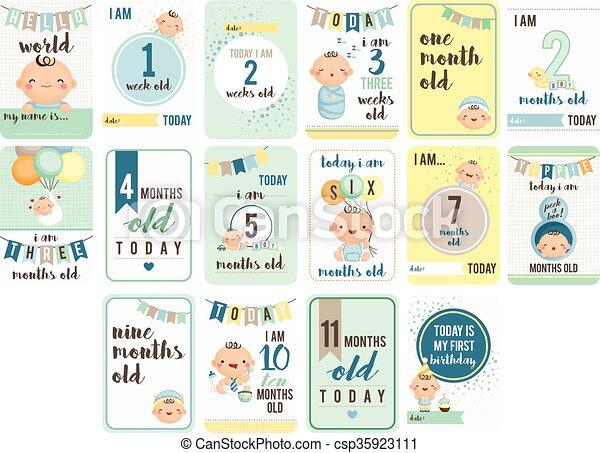 Menino beb semanas meses cart o clip art vetorizado fa a busca em ilustra es desenhos e - 25 semanas de embarazo cuantos meses son ...