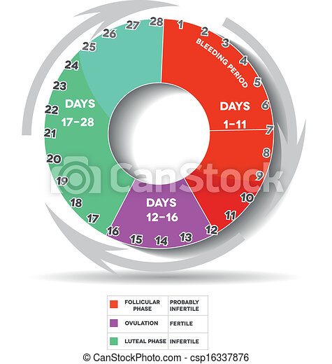 Menstrual Cycle Calendar.Menstrual Calendar