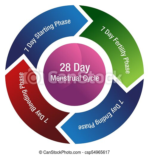 Menstrual cycle fertility chart an image of a menstrual cycle chart
