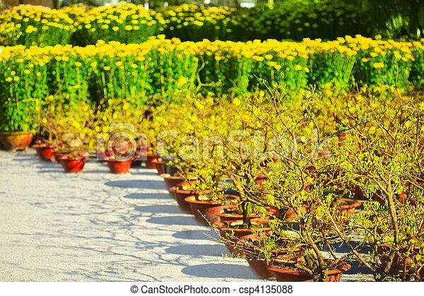 Mercado de flores - csp4135088