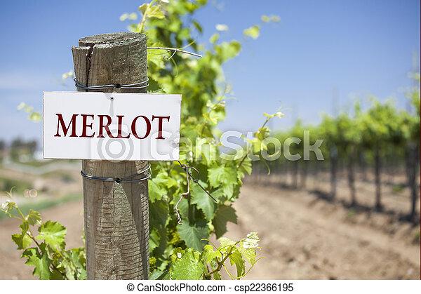 Merlot Sign On Vineyard Post - csp22366195