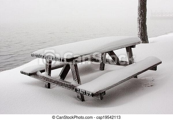 Mesa de picnic - csp19542113