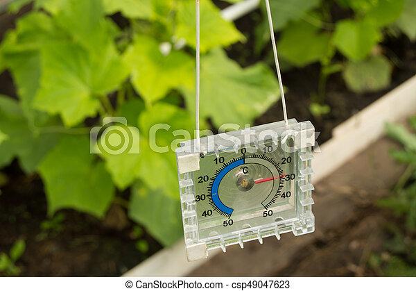 Messen Luft Gewachshaus Temperatur Thermometer Messen