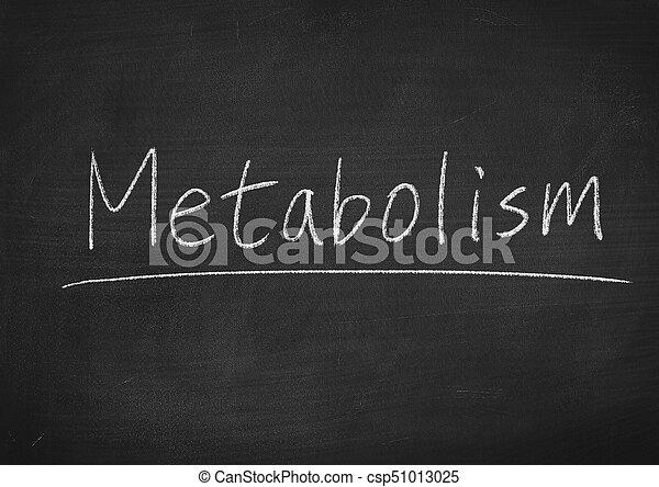 Metabolismo - csp51013025