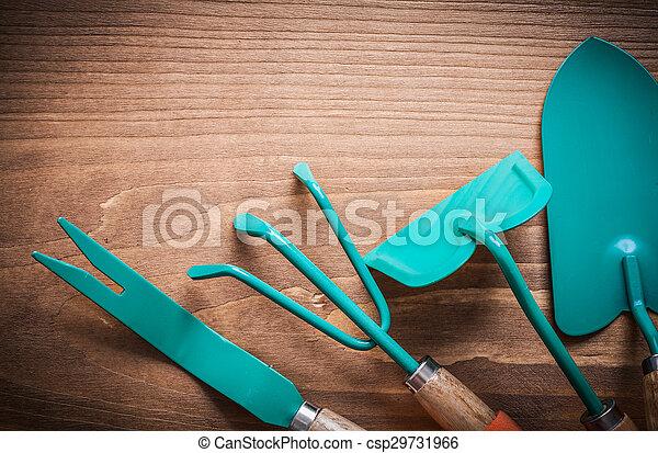 Metal hand hoe dandelion trowel spade and rake agriculture conce - csp29731966