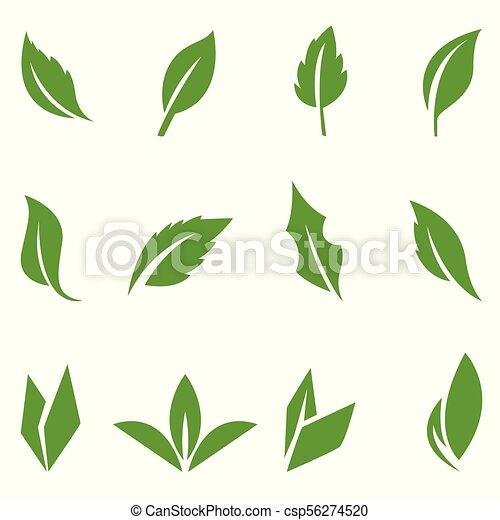 mettez stylique, feuilles vertes, elements. - csp56274520