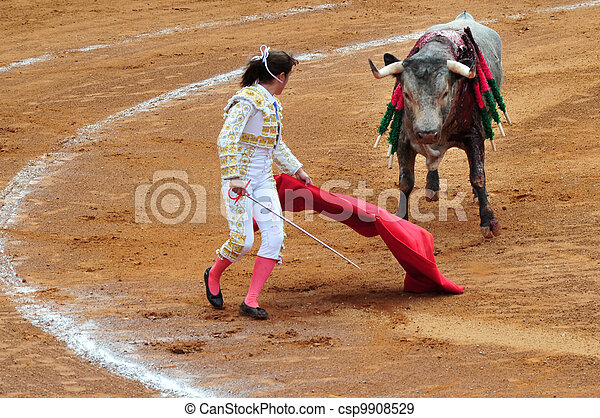 Mexican Bull-fight  - csp9908529