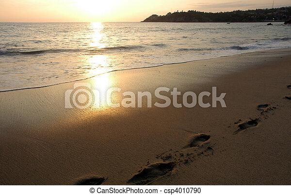 mexique, plage, pendant, puerto, escondido, coucher soleil - csp4010790