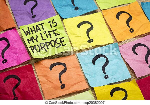 ¿Cuál es mi pregunta de propósito de vida - csp20382007
