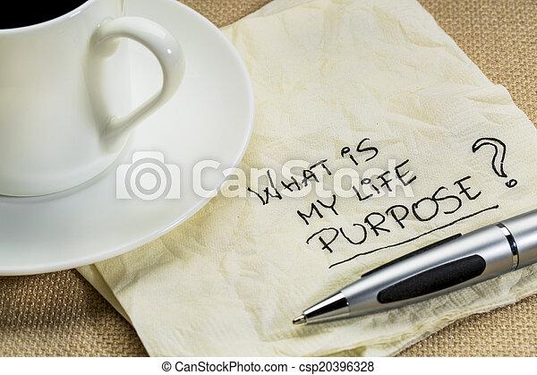 ¿Cuál es mi pregunta de propósito de vida - csp20396328