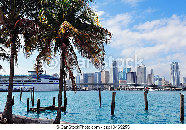 La vista tropical de Miami - csp10463255
