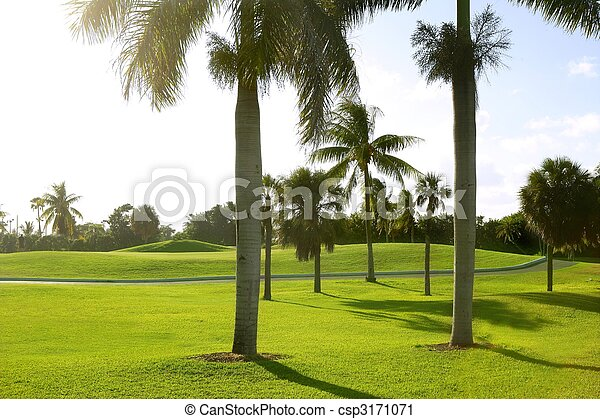Miami Key Biscayne Golf tropical field - csp3171071
