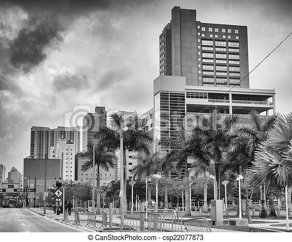 El horizonte de Miami visto desde la calle - csp22077873
