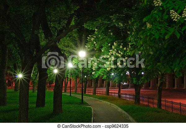 miasto, życie nocne - csp9624335