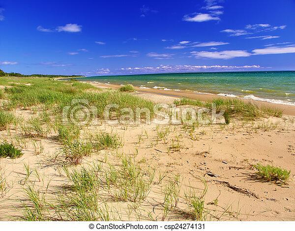El paisaje de la playa de Michigan - csp24274131