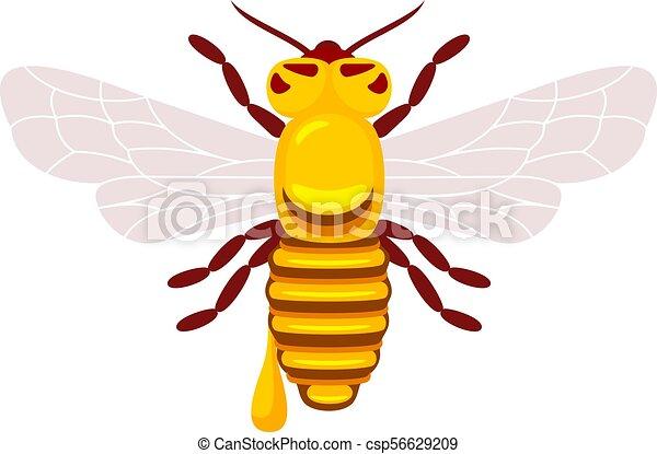 Abejas y miel - csp56629209