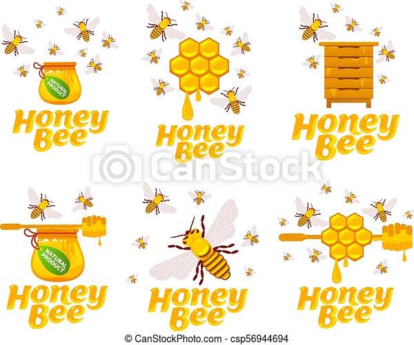 Abejas y miel - csp56944694