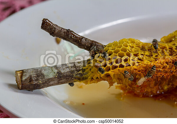 La miel fresca en el peine - csp50014052