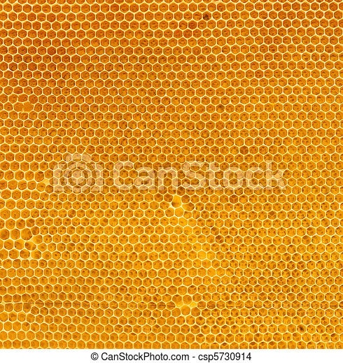 Dulce fresca en peine - csp5730914