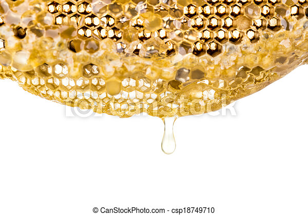 La miel fresca en el peine - csp18749710