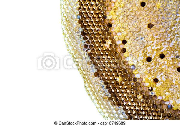 La miel fresca en el peine - csp18749689