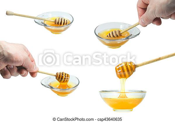 Colección de miel fresca de imágenes fijas - csp43640635