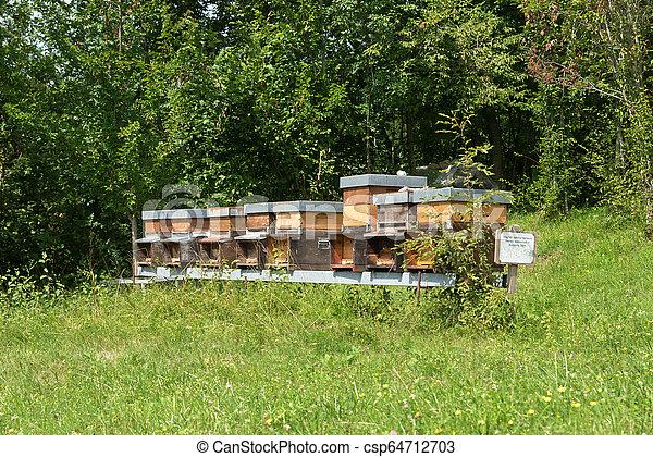 Fila de miel en el prado - csp64712703