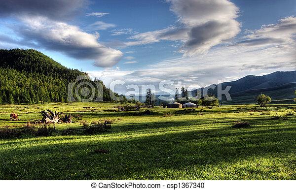 mieszkanie, mongolski - csp1367340