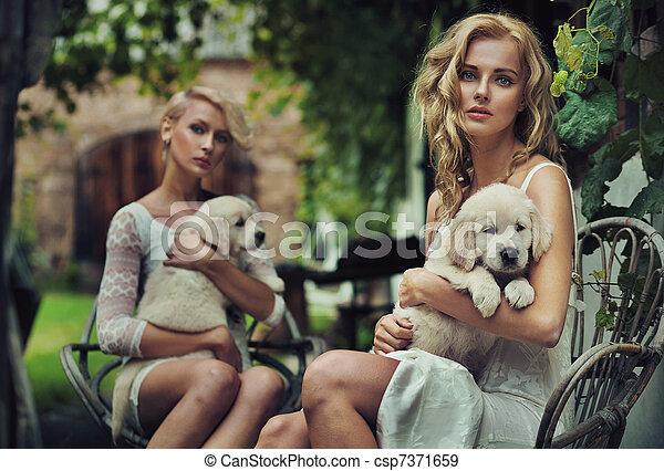 mignon, blondie, deux, étreindre, chiots - csp7371659