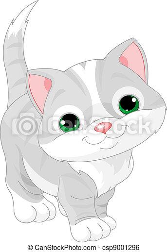 mignon, chaton gris - csp9001296