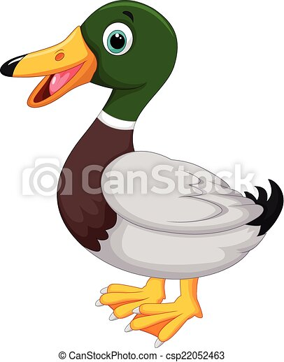 Mignon dessin anim canard mignon vecteur dessin - Illustration canard ...