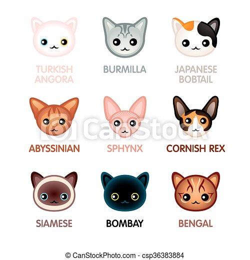 Mignon Ensemble Icones Chat Kawaii Illustre Tete Chat Icones