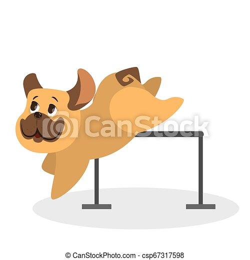 mignon, fourrure, brun, rigolote, caractère, chien, jumping., chiot - csp67317598