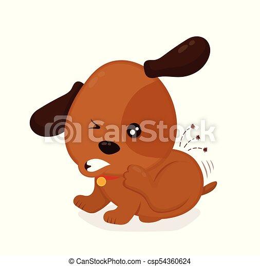 mignon, puces, fermé, fâché, chien, grattements, itchy - csp54360624