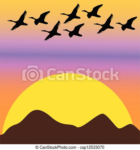 migratory birds on sunset or dawn - csp12533070