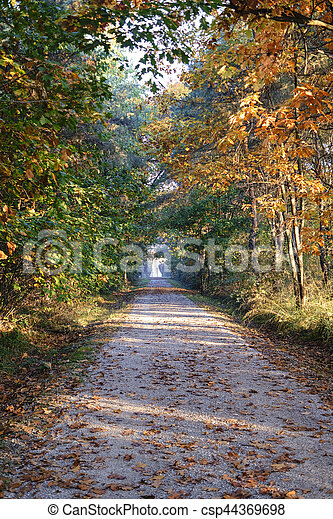 Milan (Italy): Park of Groane at fall - csp44369698