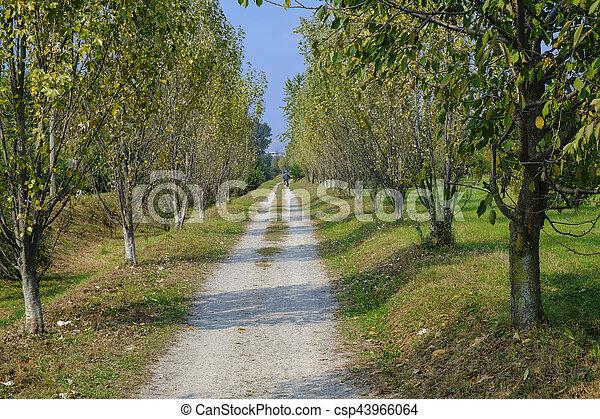 Milan (Italy): park of Grugnotorto at fall - csp43966064