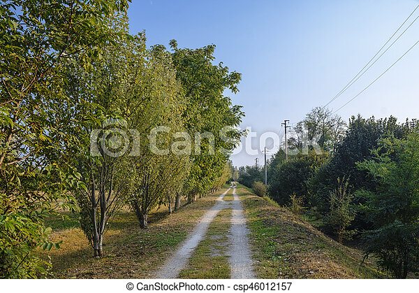 Milan (Italy): park of Grugnotorto at fall - csp46012157