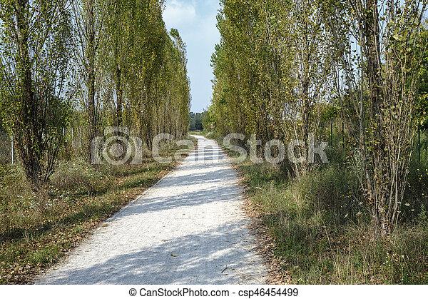 Milan (Italy): park of Grugnotorto at fall - csp46454499